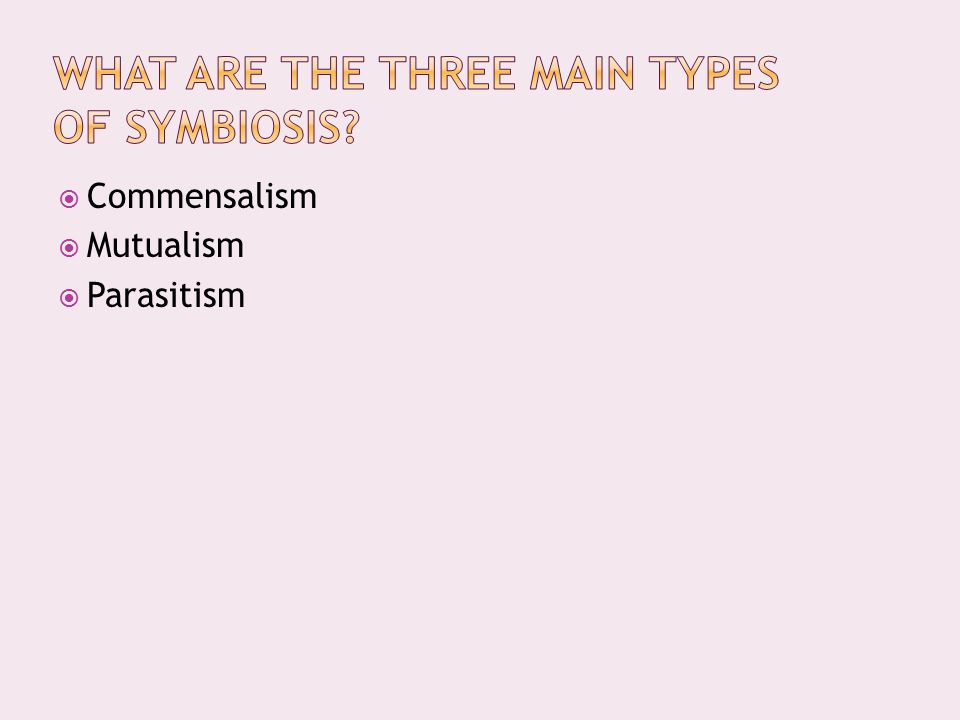 What are the three main types of symbiosis