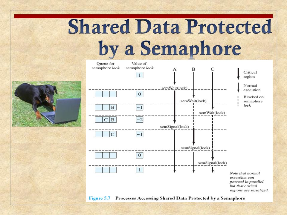 Shared Data Protected by a Semaphore