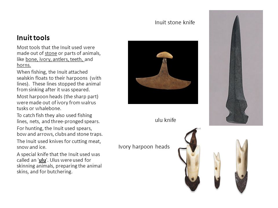 Inuit tools Inuit stone knife ulu knife Ivory harpoon heads