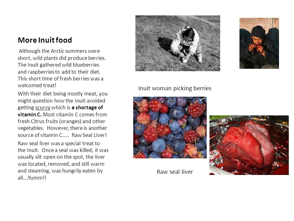 More Inuit food Inuit woman picking berries Raw seal liver