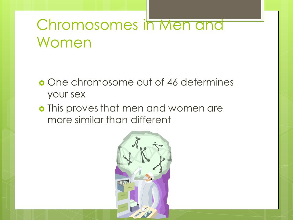 Chromosomes in Men and Women