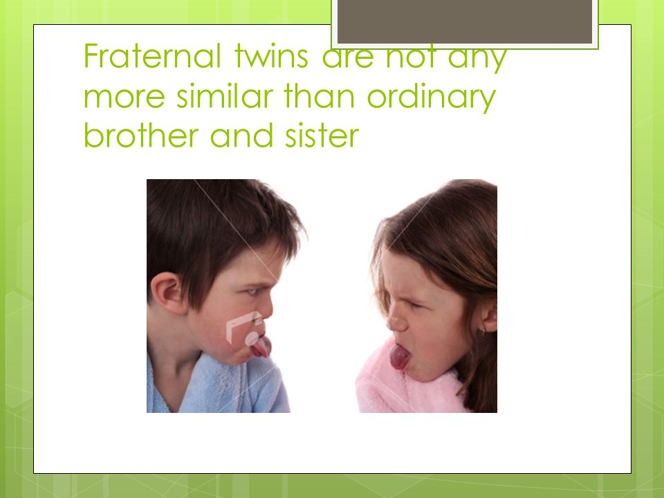 Fraternal twins are not any more similar than ordinary brother and sister