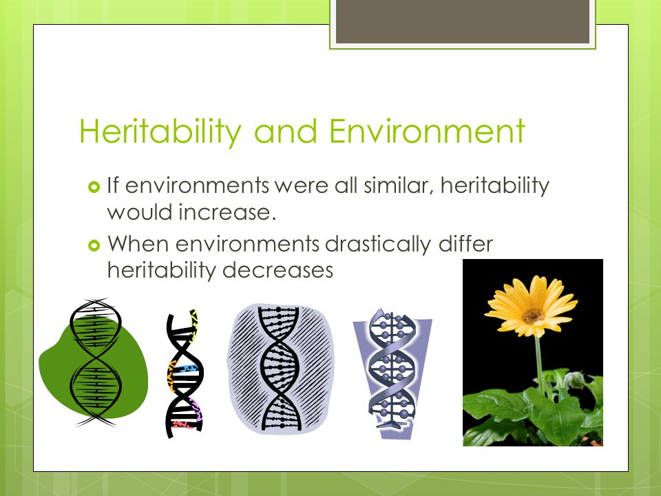 Heritability and Environment