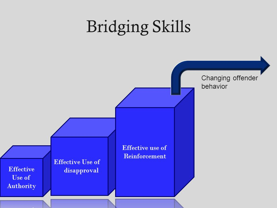 Bridging Skills Changing offender behavior