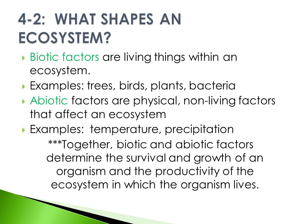 4-2: WHAT SHAPES AN ECOSYSTEM