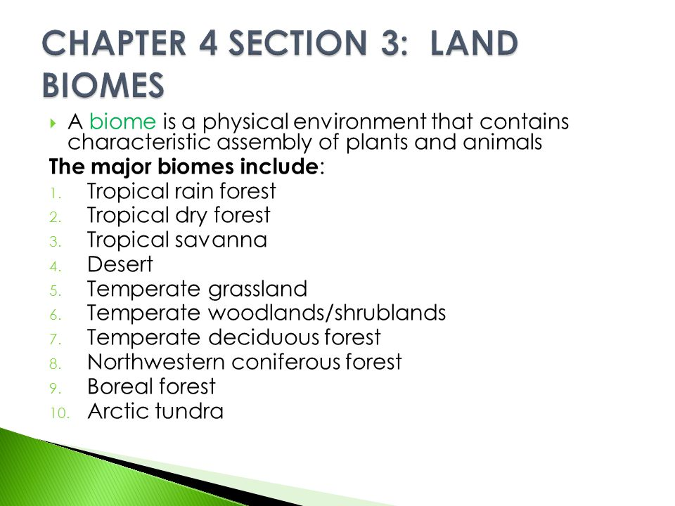 CHAPTER 4 SECTION 3: LAND BIOMES