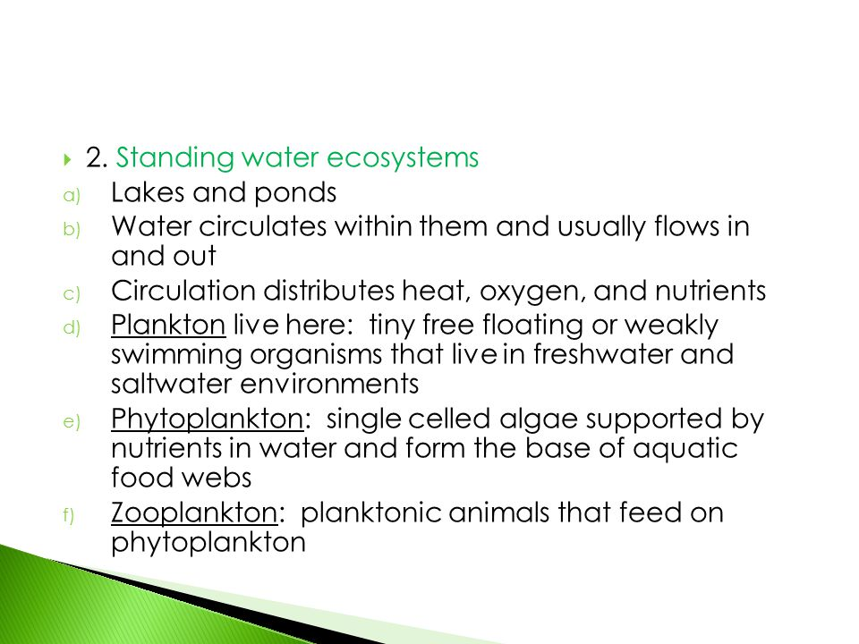 2. Standing water ecosystems