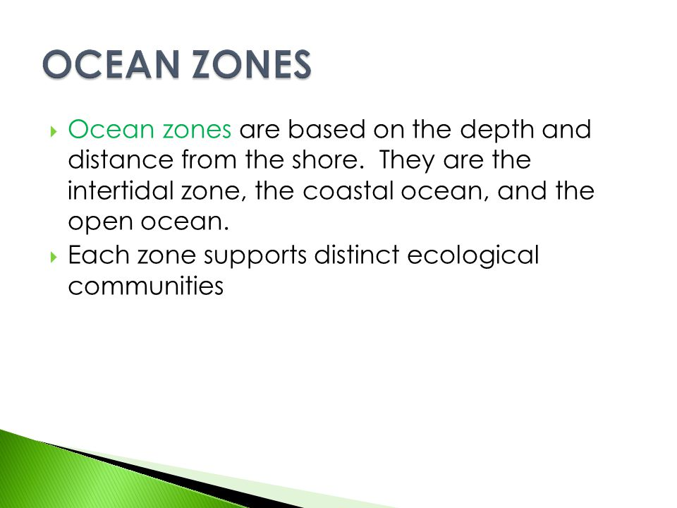 OCEAN ZONES Ocean zones are based on the depth and distance from the shore. They are the intertidal zone, the coastal ocean, and the open ocean.