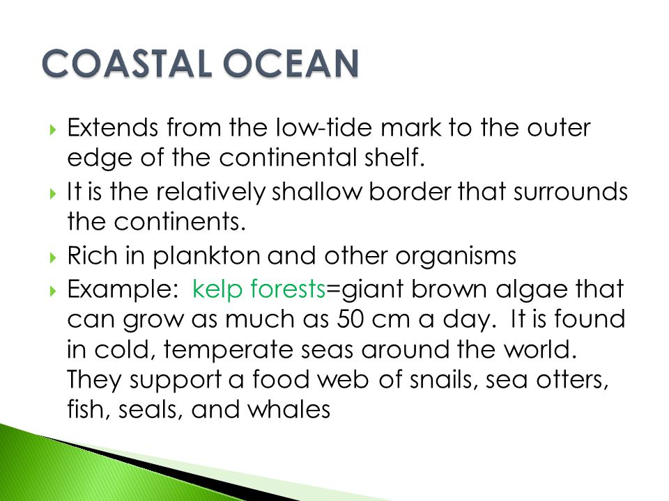 COASTAL OCEAN Extends from the low-tide mark to the outer edge of the continental shelf.