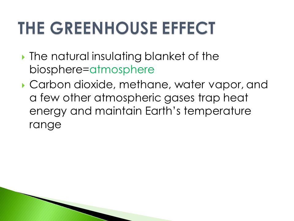 THE GREENHOUSE EFFECT The natural insulating blanket of the biosphere=atmosphere.