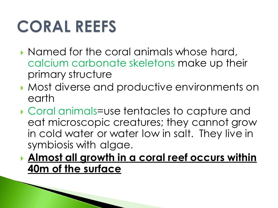 CORAL REEFS Named for the coral animals whose hard, calcium carbonate skeletons make up their primary structure.