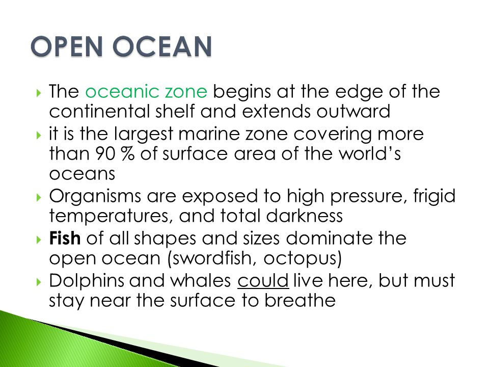 OPEN OCEAN The oceanic zone begins at the edge of the continental shelf and extends outward.