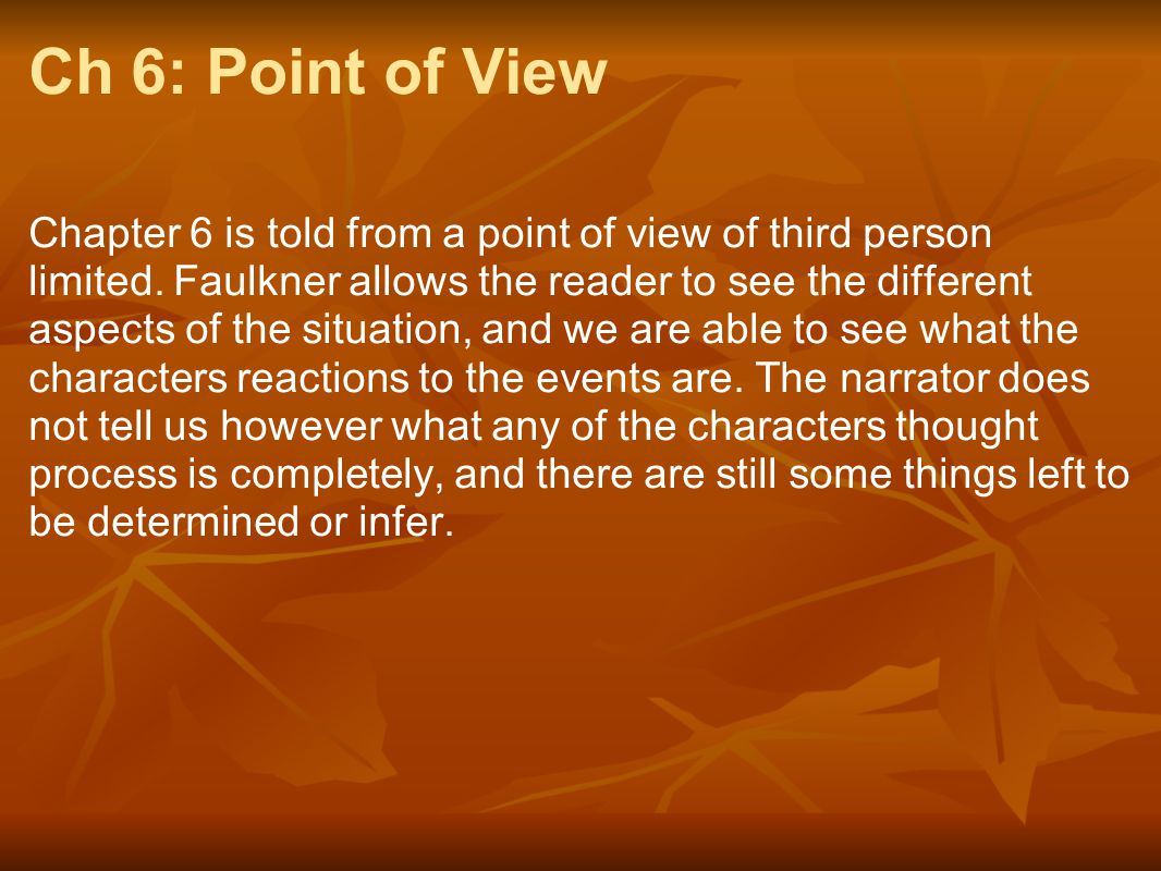 Ch 6: Point of View
