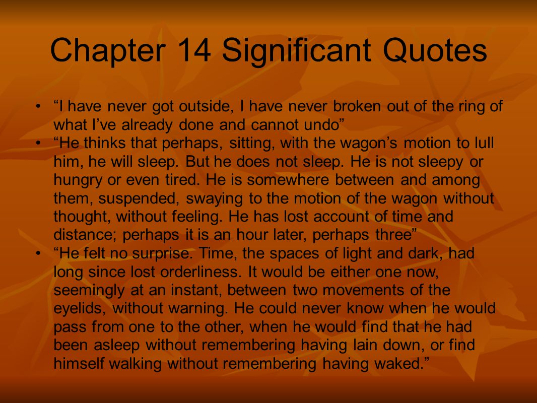 Chapter 14 Significant Quotes