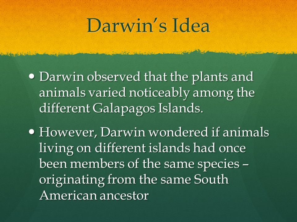 Darwin's Idea Darwin observed that the plants and animals varied noticeably among the different Galapagos Islands.
