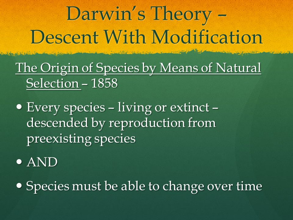 Darwin's Theory – Descent With Modification