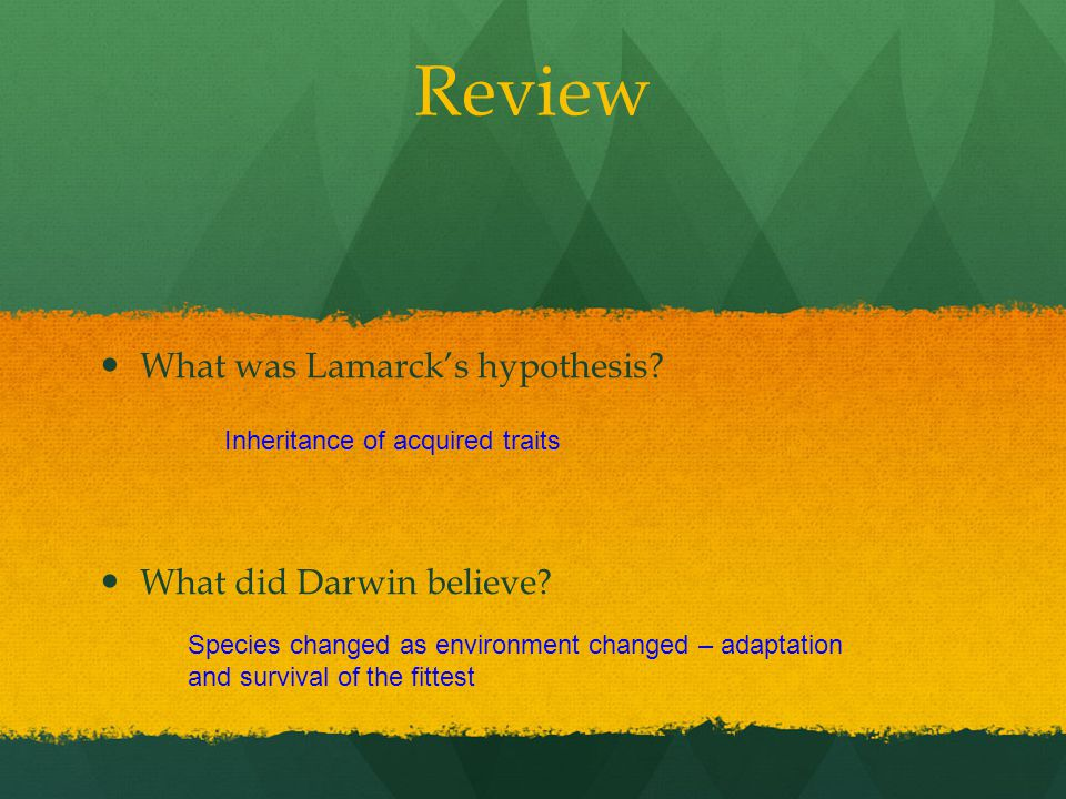 Review What was Lamarck's hypothesis What did Darwin believe