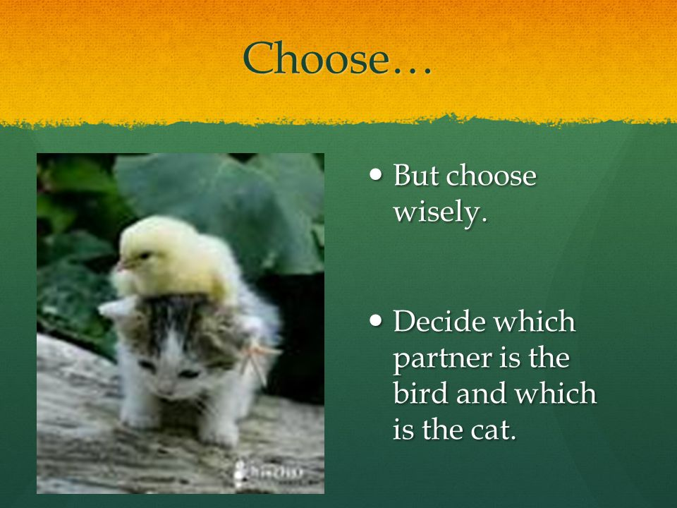 Choose… But choose wisely.