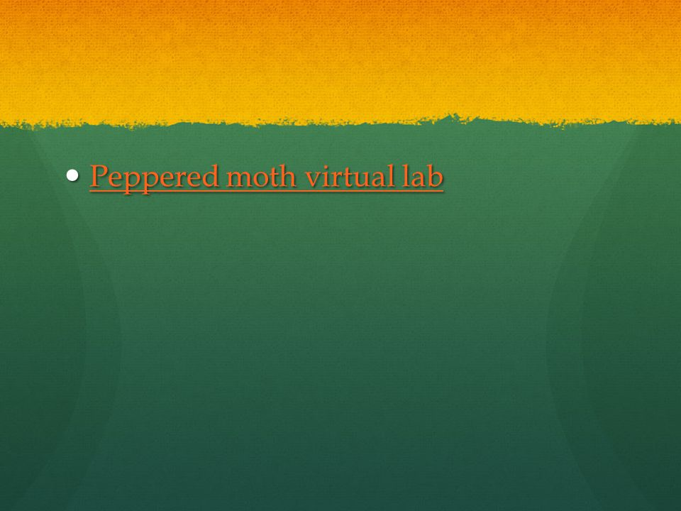 Peppered moth virtual lab