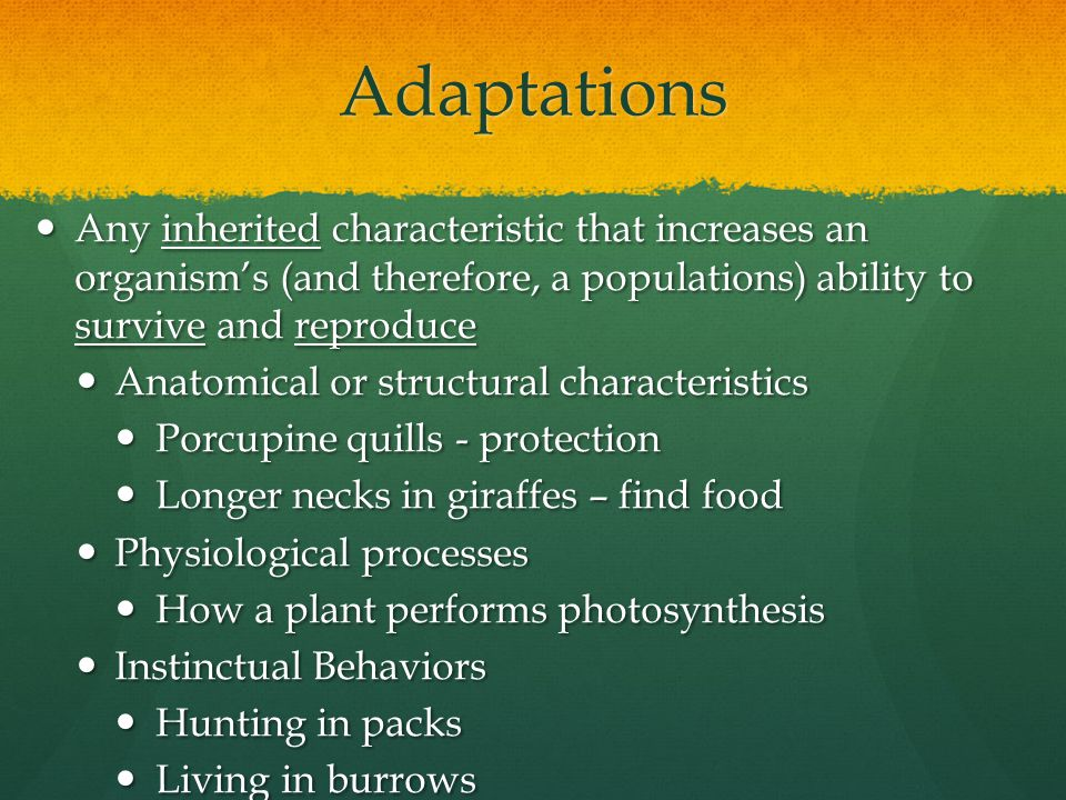 Adaptations Any inherited characteristic that increases an organism's (and therefore, a populations) ability to survive and reproduce.