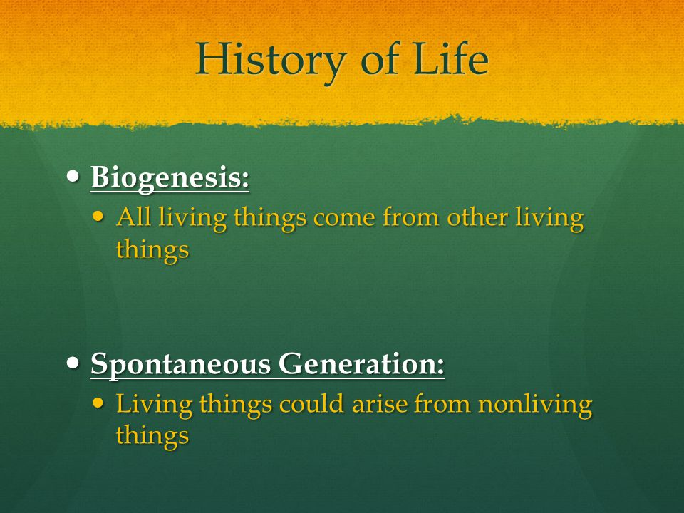 History of Life Biogenesis: Spontaneous Generation: