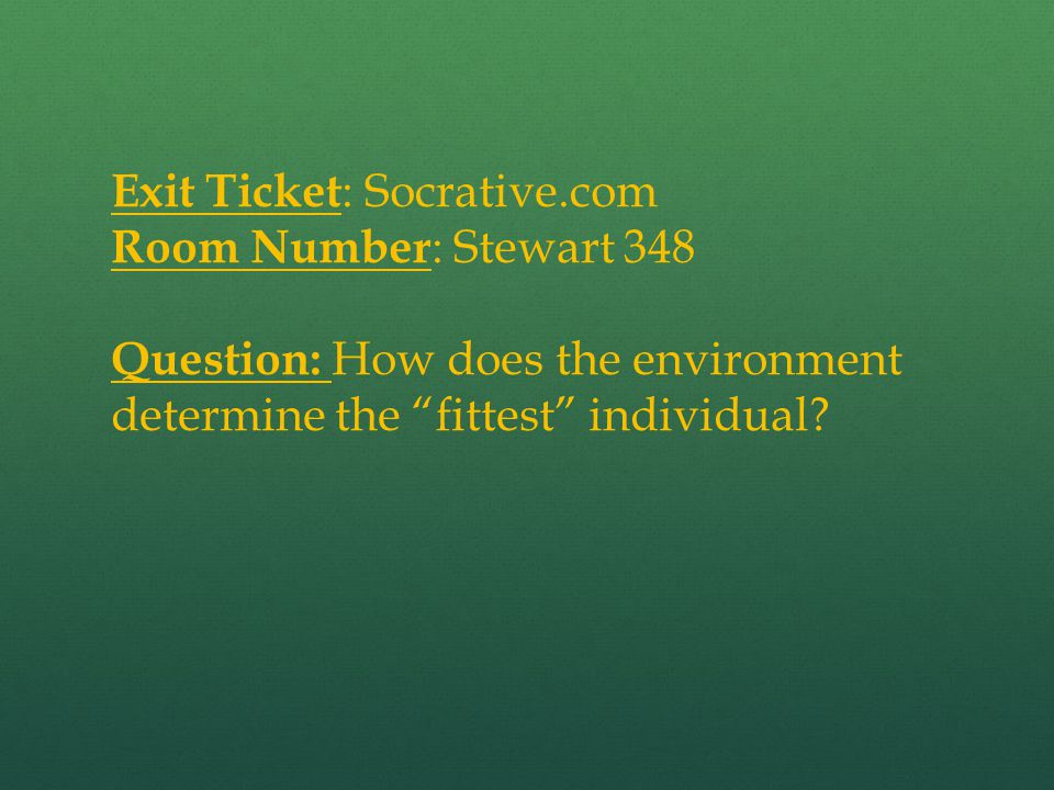 Exit Ticket: Socrative.com
