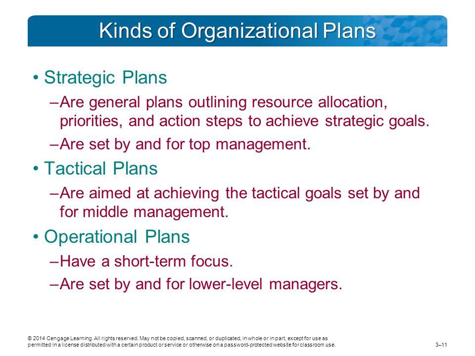 Kinds of Organizational Plans
