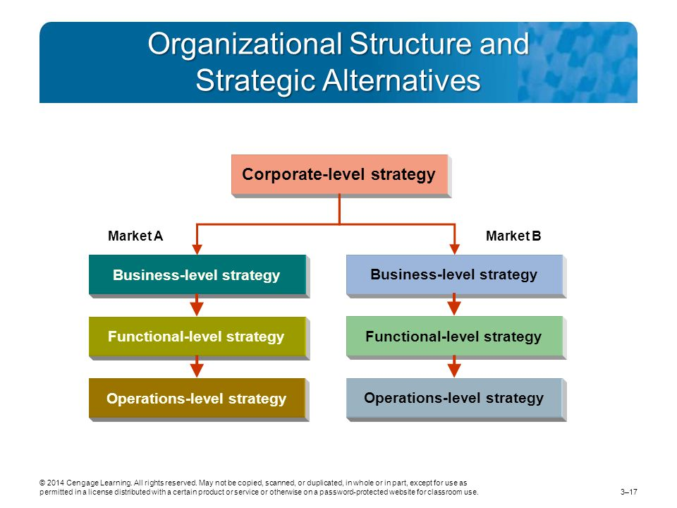 Organizational Structure and Strategic Alternatives