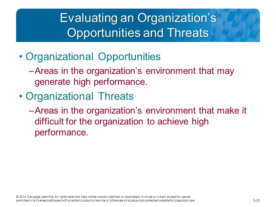 Evaluating an Organization's Opportunities and Threats