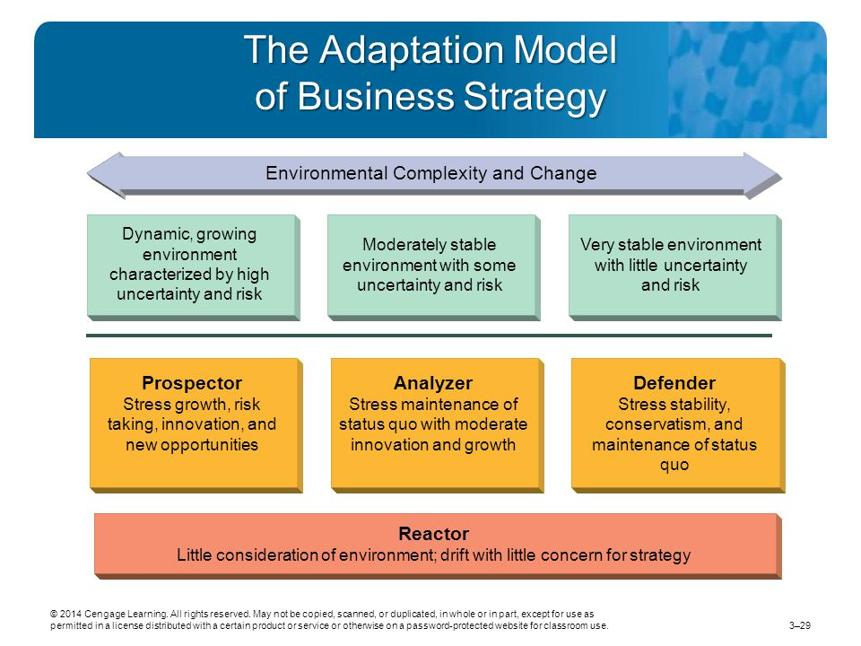 The Adaptation Model of Business Strategy