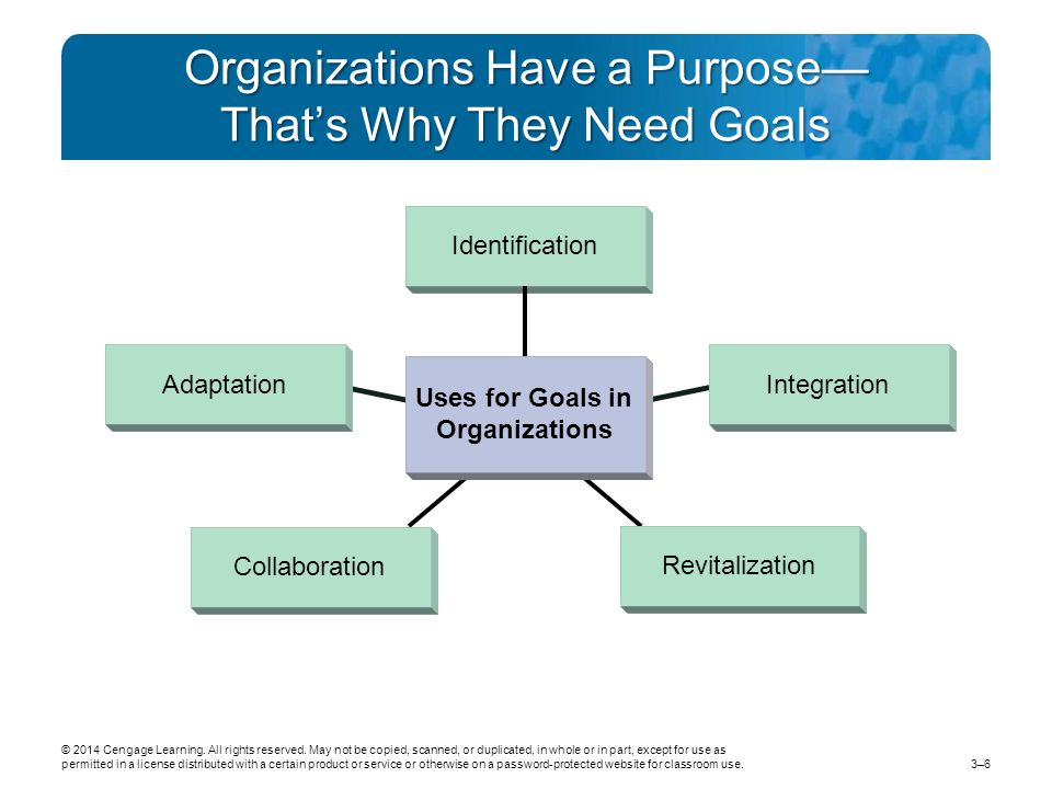 Organizations Have a Purpose— That's Why They Need Goals
