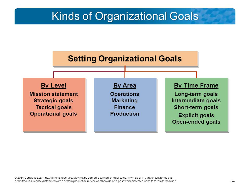 Kinds of Organizational Goals