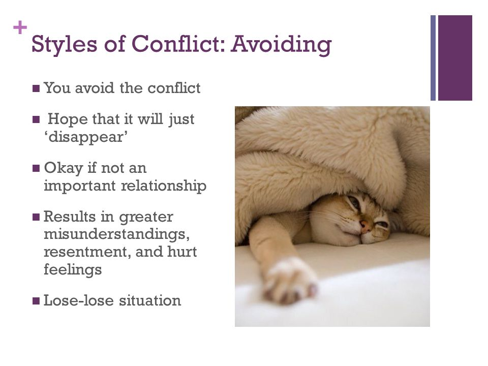 Styles of Conflict: Avoiding