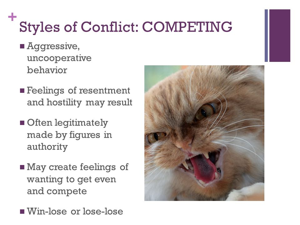 Styles of Conflict: COMPETING