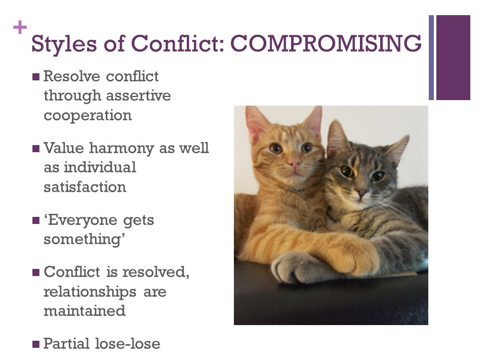 Styles of Conflict: COMPROMISING