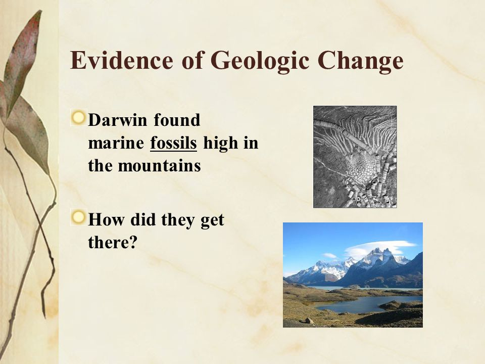 Evidence of Geologic Change