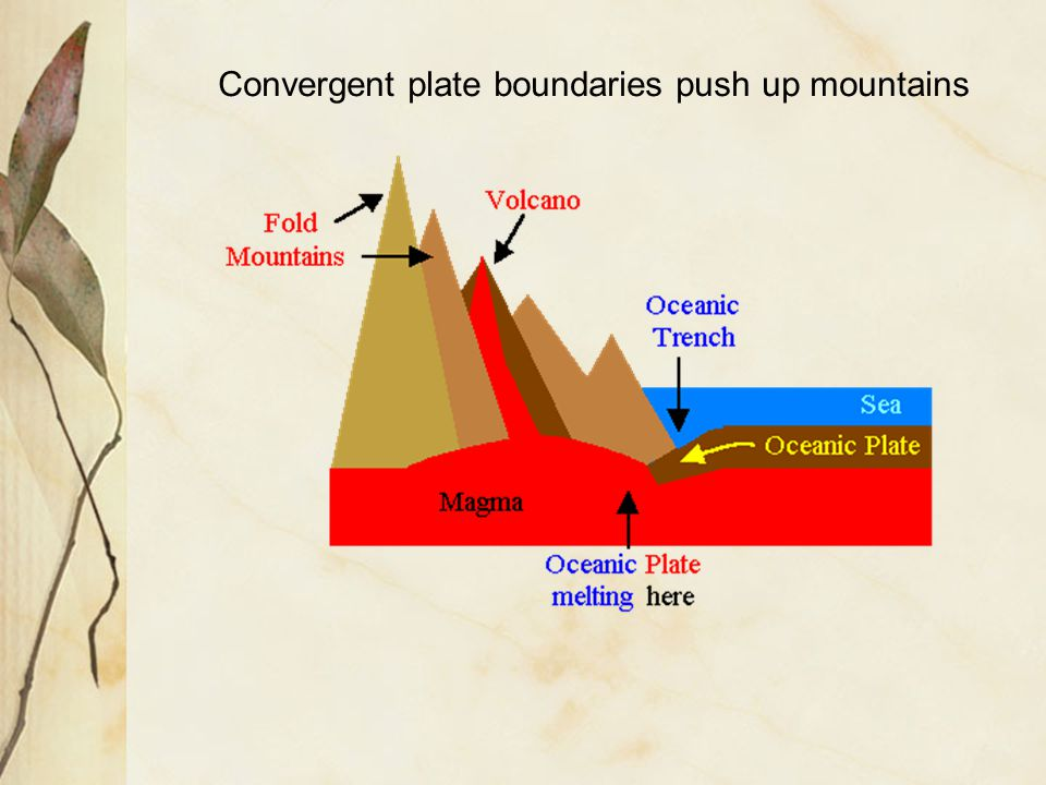Convergent plate boundaries push up mountains