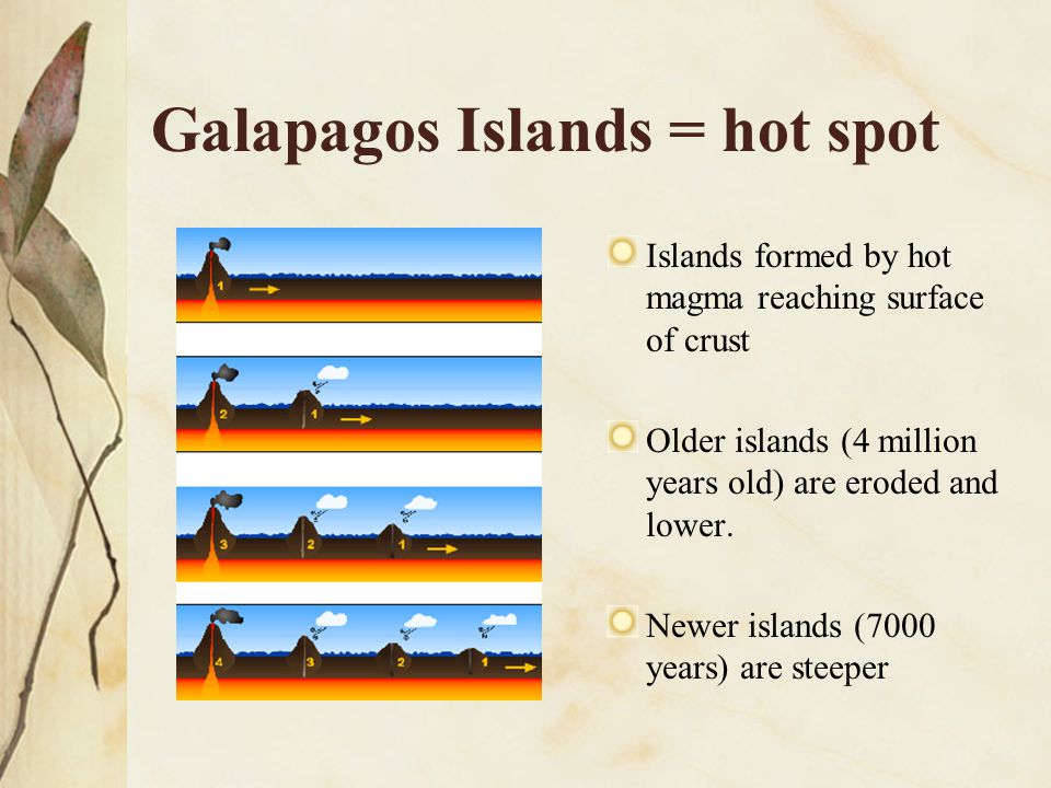 Galapagos Islands = hot spot