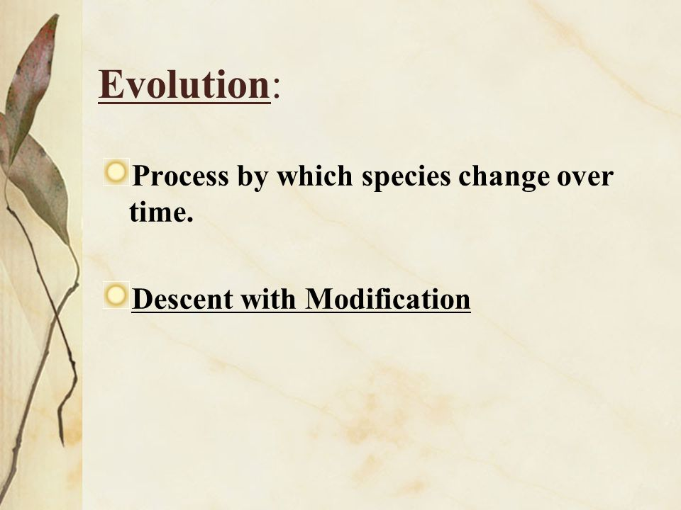 Evolution: Process by which species change over time.