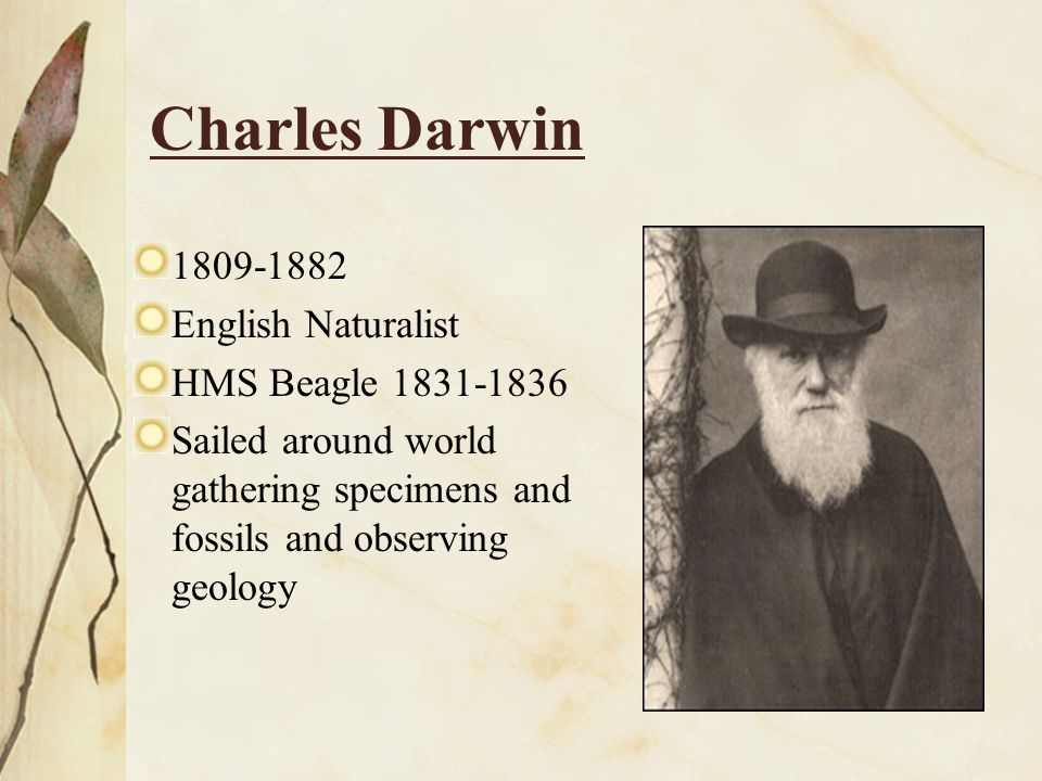 Charles Darwin 1809-1882 English Naturalist HMS Beagle 1831-1836
