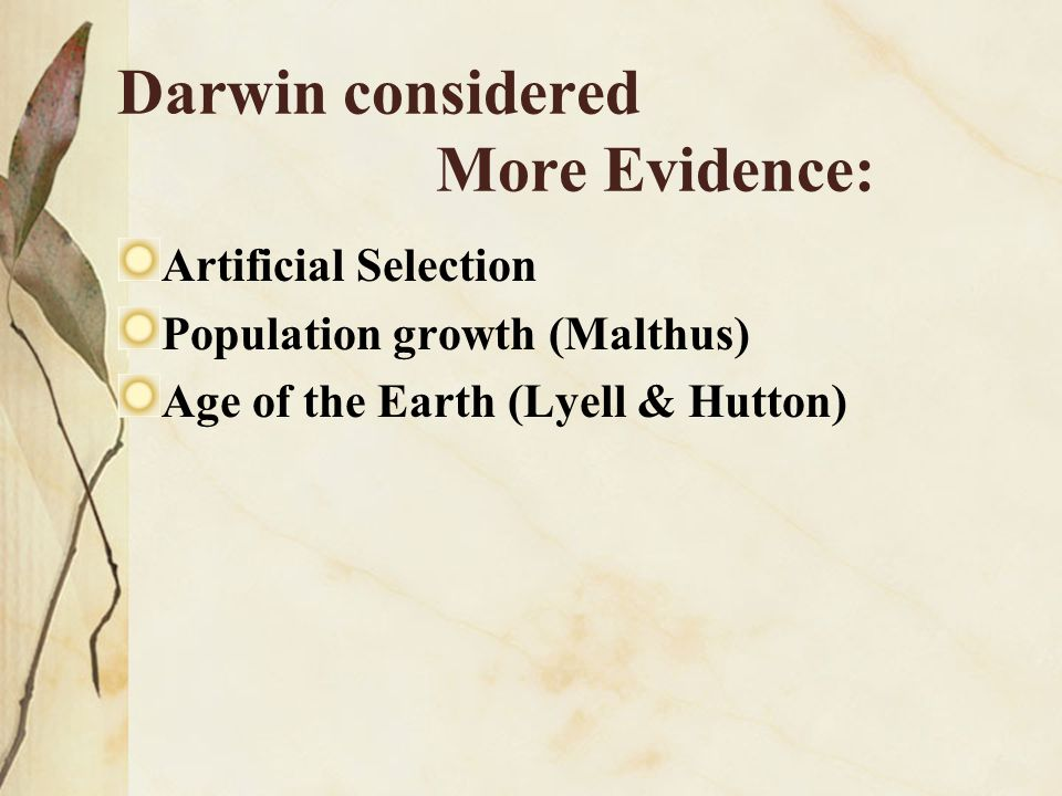 Darwin considered More Evidence: