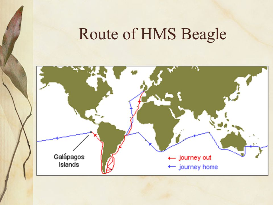 Route of HMS Beagle