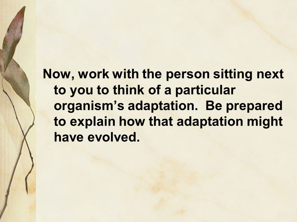 Now, work with the person sitting next to you to think of a particular organism's adaptation.