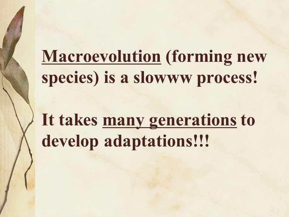 Macroevolution (forming new species) is a slowww process
