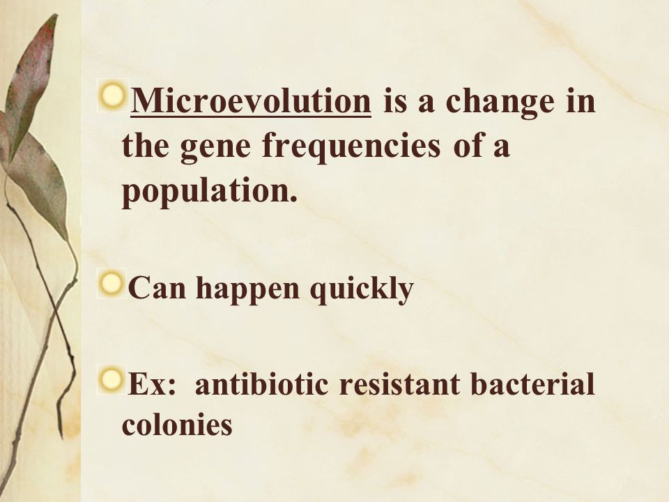 Microevolution is a change in the gene frequencies of a population.