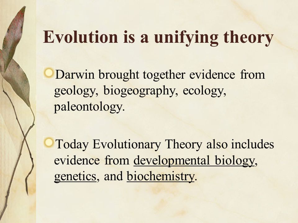 Evolution is a unifying theory