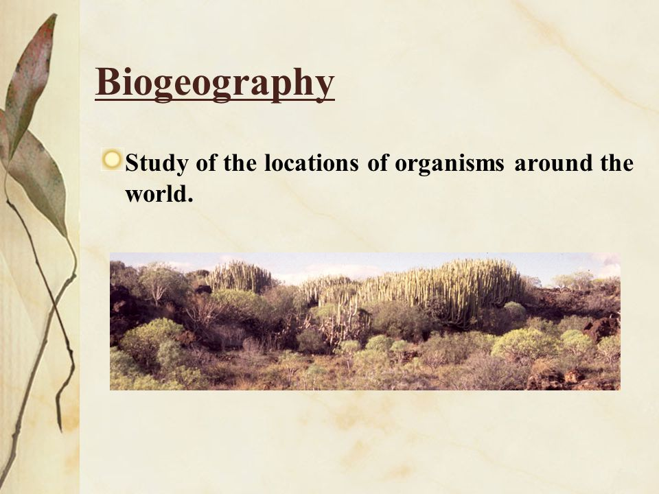 Biogeography Study of the locations of organisms around the world.