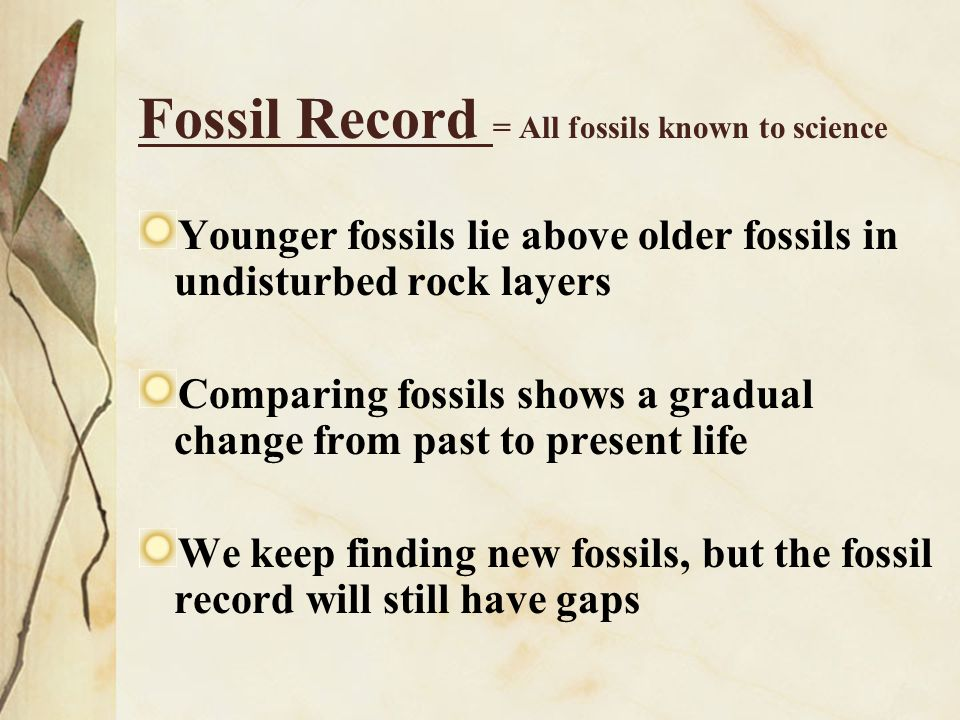 Fossil Record = All fossils known to science