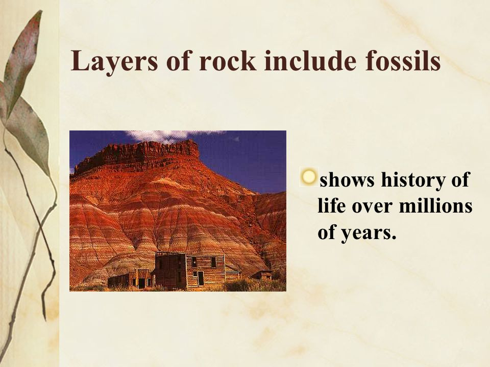 Layers of rock include fossils