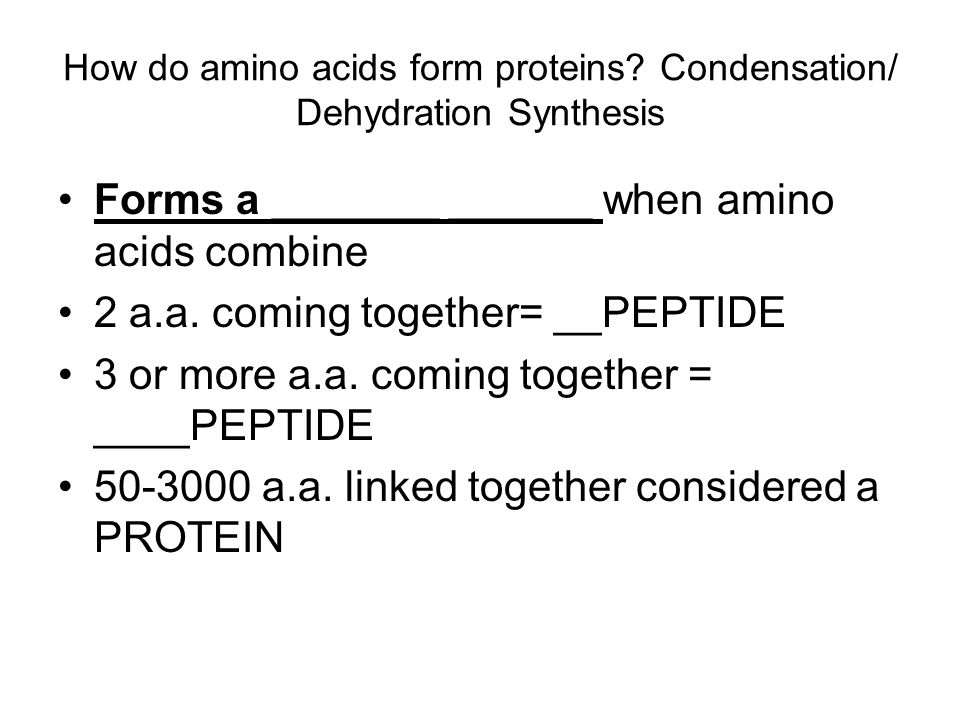 How do amino acids form proteins Condensation/ Dehydration Synthesis